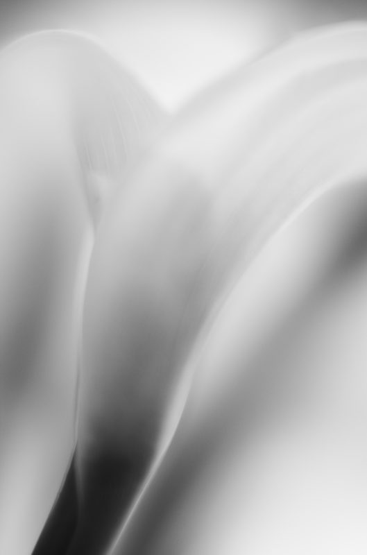 Abstract black and White Leica-M